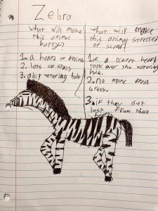 Animal profile for a zebra. This animal profile is to give detail to things that make a zebra happy and things that might stress it out.
